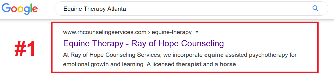 Equine Therapy SEO