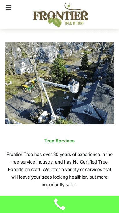 Google AMP Mobile Tree Website