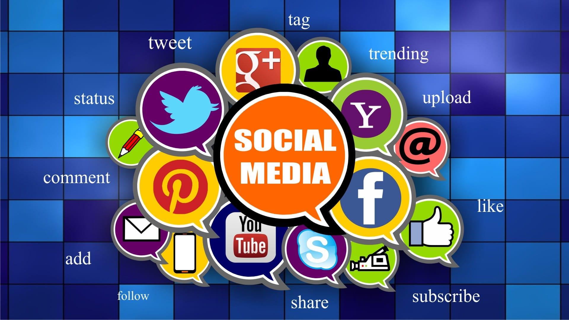 Online Marketing Roselle