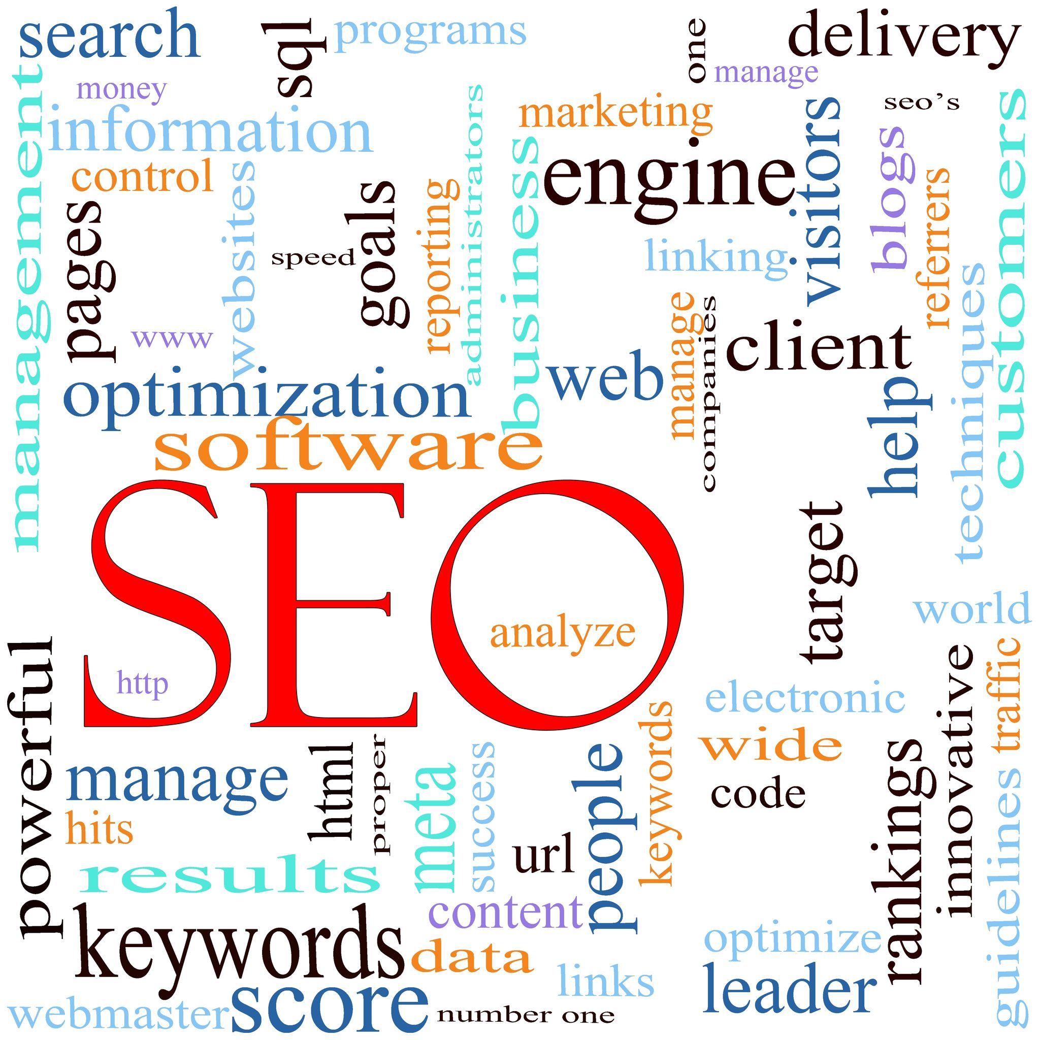 Search Engine Optimization Cedar Grove