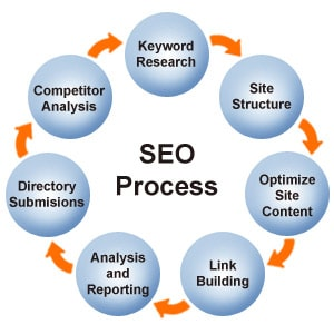 Search Engine Optimization Maplewood