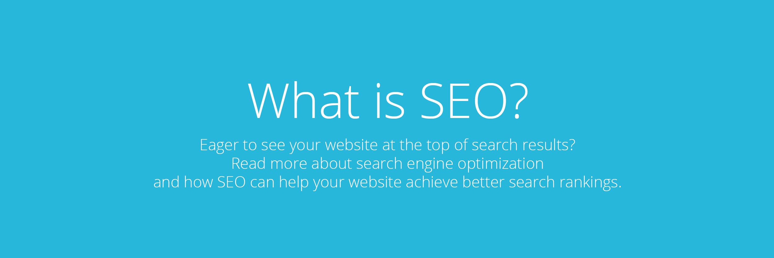 Search Engine Optimization Prospect Park
