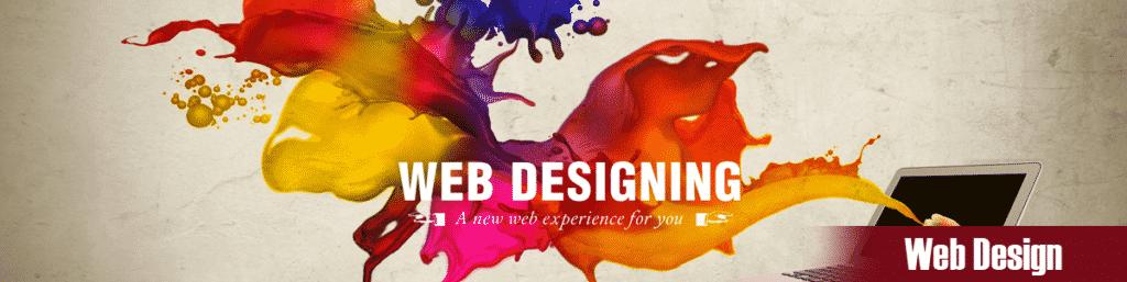 Web Design Company Buena