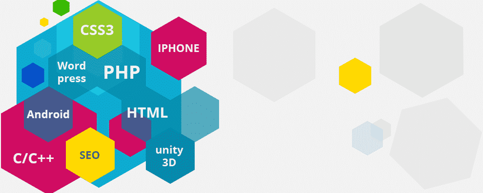 Web Design Company Mount Holly