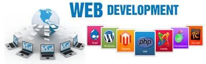 Web Design Company Roselle