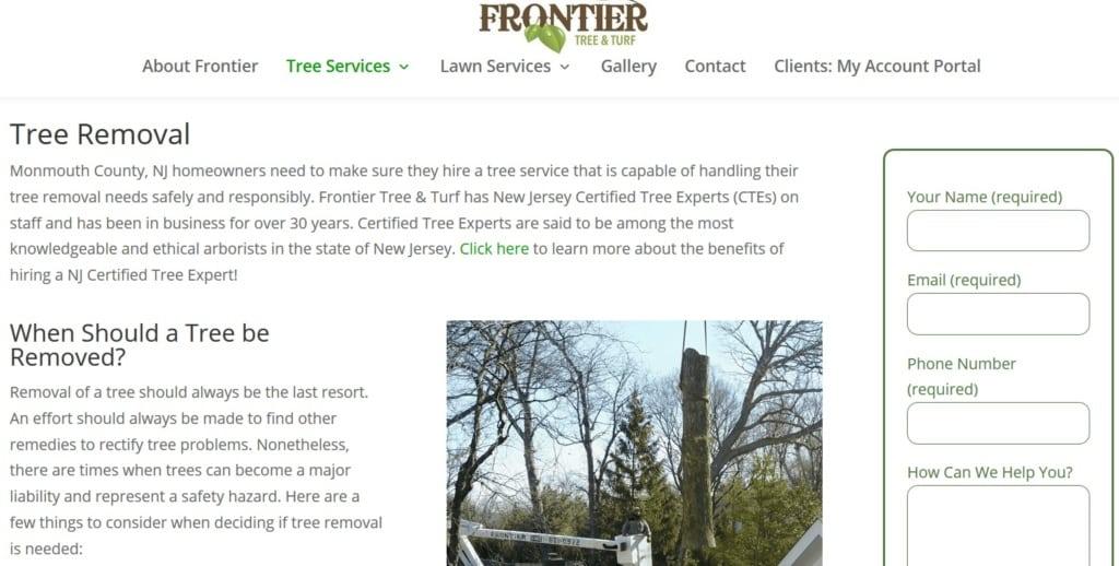 Website Traffic Tree Service