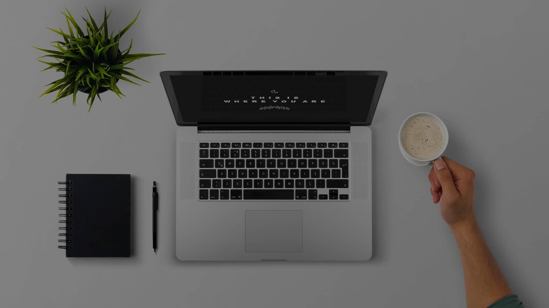 Website designer Alexandria Township