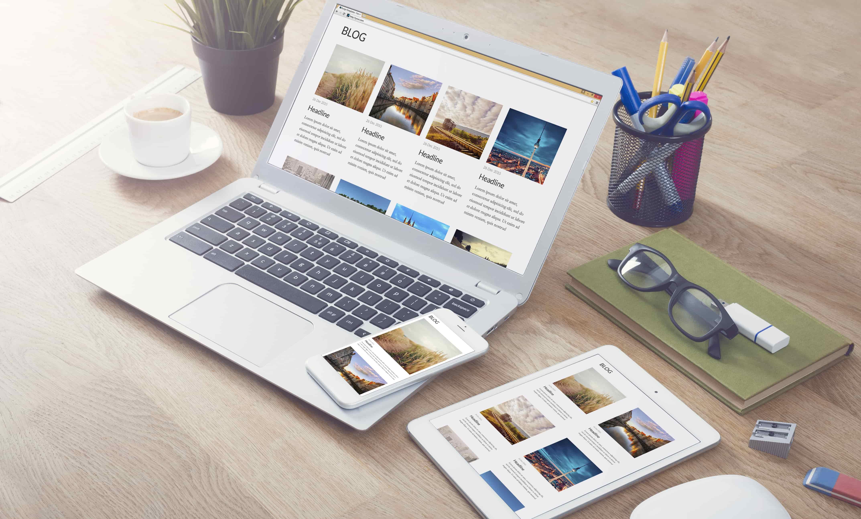 Website designer Chesilhurst
