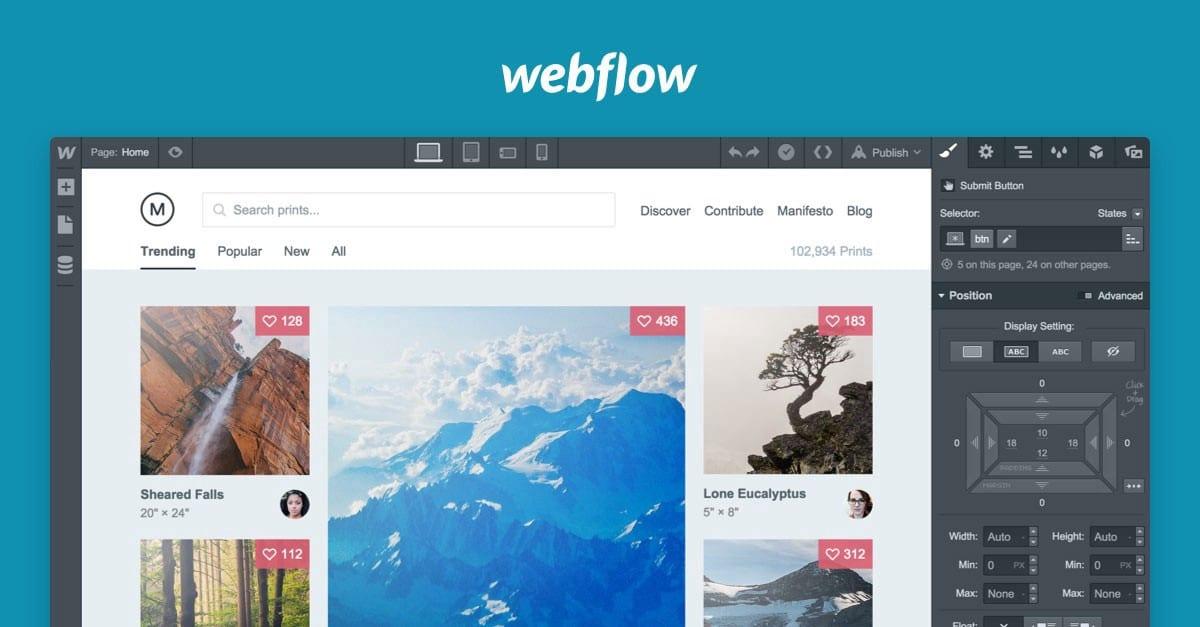 Website designer Hampton