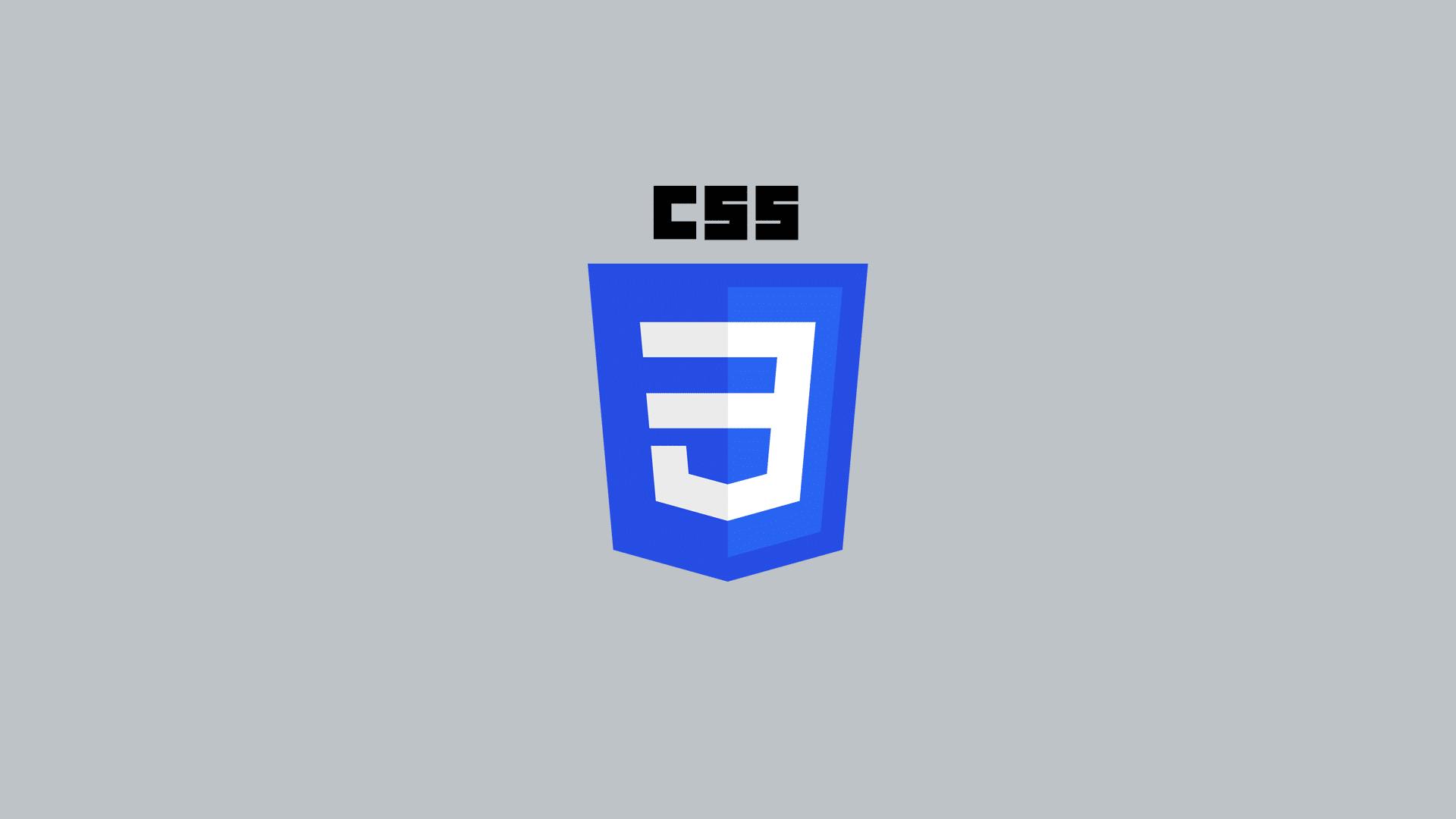 Web Designer Berlin