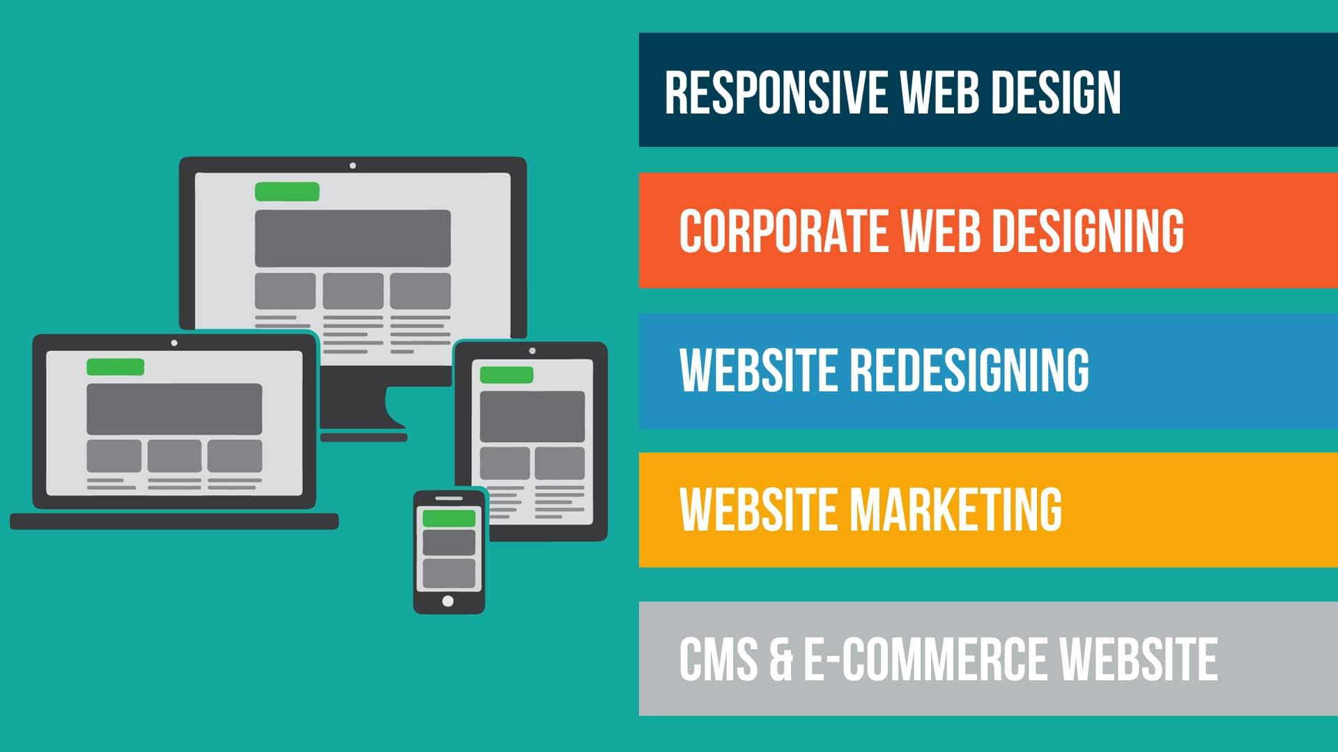 Web Designer Woodland Park